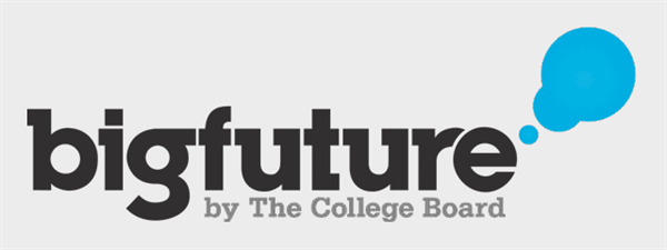 logo-bigfuture-greyblock