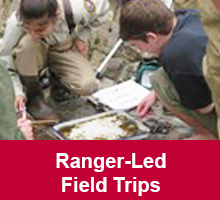 hss-ranger-led-field-trips-box